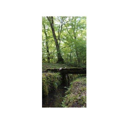 Adhésif pour porte - petit pont